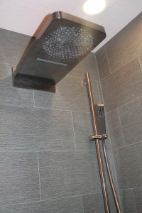 Yes, it's a dream shower. Cascading water, rain shower PLUS a hand shower.